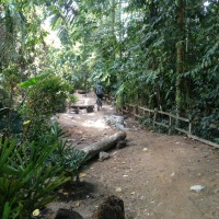 Renovation works at Bukit Timah Mountain Biking Trail