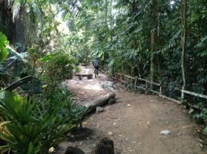 Renovation works at Bukit Timah Mountain BikingTrail